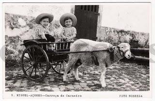 S. Miguel - Açores - Carroça de Carneiro (Foto Nobrega)
