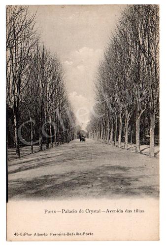 Postal antigo do Porto - Palácio de Cristal, Avenida das Tílias. Edição Alberto Ferreira