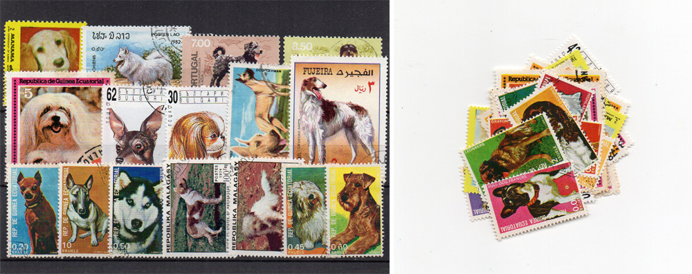 40 selos diferentes de cães