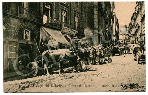 Postal antigo do Porto – Praça da Ribeira (carros de bois esperando fretes)