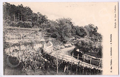 Postal antigo de Figueiró dos Vinhos - Arredores - A Fontinha