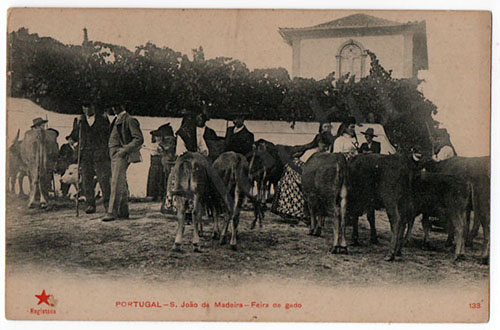 Postal antigo de São João de Madeira