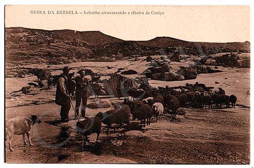 Postal antigo da Serra da Estrela
