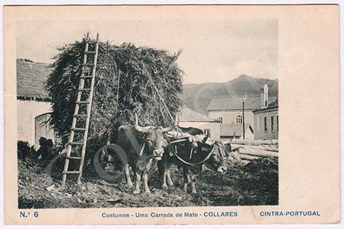 Postal antigo de costumes Sintra - Colares