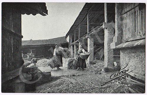 Postal antigo de costumes portugueses - Foto Alvão